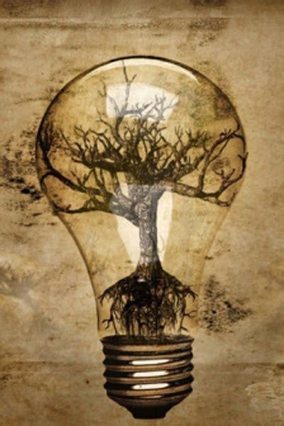 abstract lightbulb tree roots bonsai bark