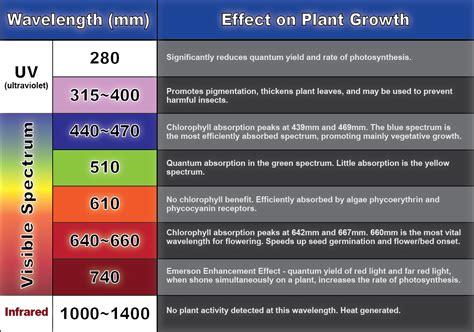 Ir Led Biru aquaplantarium spektrum cahaya yang dibutuhkan untuk