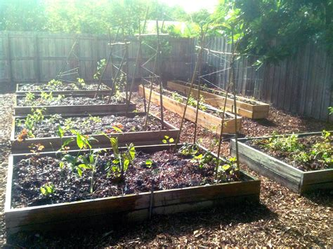 backyard bed the ultimate backyard edible raised bed sheet mulch