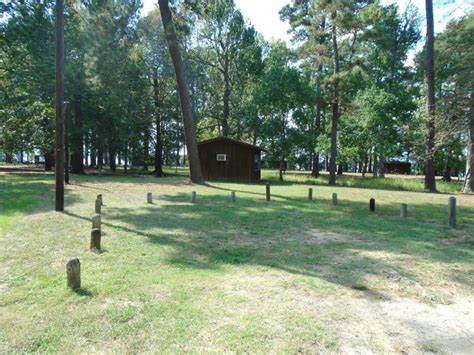 Martin Dies State Park Cabins martin dies jr state park limited use cabins parks wildlife department