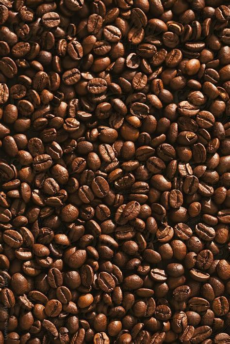 coffee seed wallpaper 17 best images about phone wallpapers on pinterest