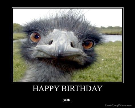 silly happy birthday images picture nefv0bkax7 happy birthday