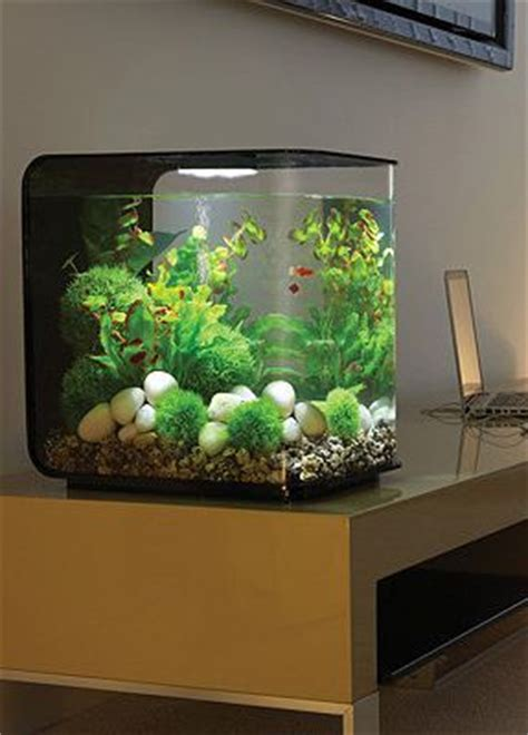 Small Aquarium In Home 17 Best Ideas About Small Fish Tanks On