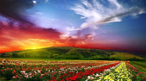 colorful landscapes colorful landscapes pictures to pin on pinsdaddy