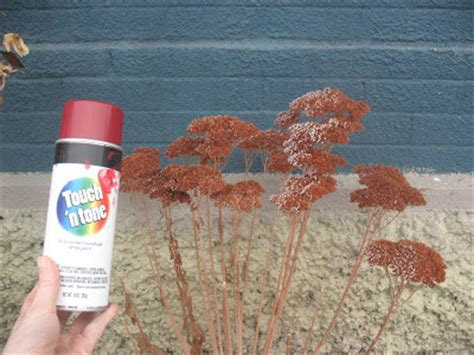 spray painting in winter someday crafts spray paint your dead plants to give them