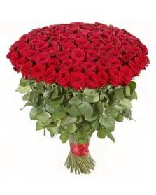 100 Red Roses 100 Premium Red Roses 89 99 With Free Shipping
