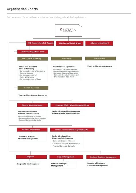 non profit charter template chart printable blank non profit organizational chart