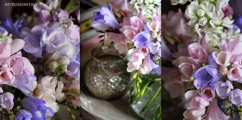 nomi di fiori primaverili fiori di primavera immagini