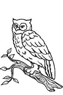 Coloring pages forest animal coloring page forest animal colouring