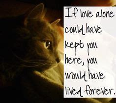 comforting words for death of a pet 1000 ideas about pet grief on pinterest losing a pet