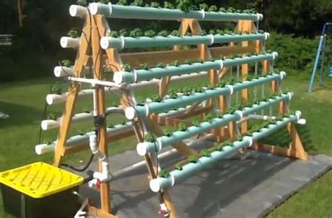 Vertical Hydroponic Gardening Systems How To Grow 168 Plants In A 6 X 10 Space With A Diy A