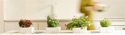 Click And Grow Refills bloempotten binnen originele plantenbakken