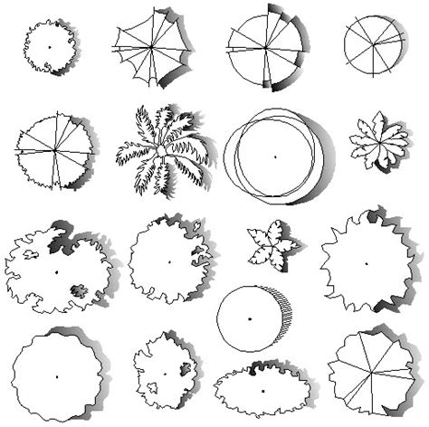 engineering drawing tree template architectural renderings of trees used in architectural