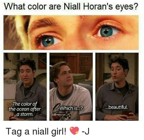 niall horan eye color what color are niall horan s the color of beautiful