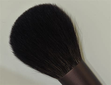 Lunasol Powder lunasol brushes cheek n and powder n sweet makeup