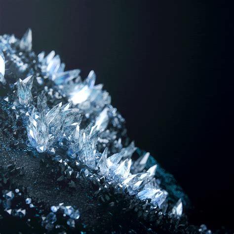 camellia crystallized