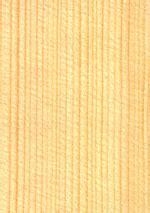 Fichte Eigenschaften by Fichte Holzmuster Eigenschaften Anwendungsgebiete