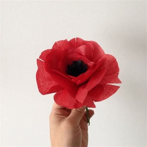 How To Make Tissue Paper Poppies - tissue paper poppy just for poppies