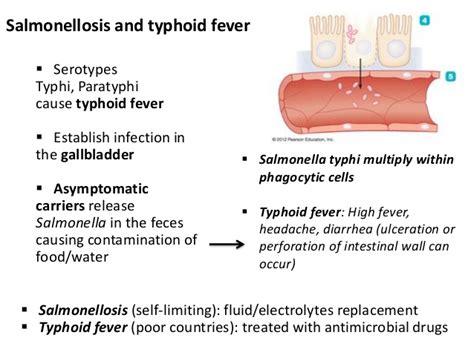 13 bio265 disease of gastrointestinal urogenital systems
