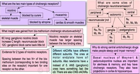 Anticholinergic Also Search For Cholinergic Antagonists Acetylcholine Antagonists Anticholinergic Agents