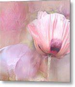 poppy davina poppy and peony photograph by davina nicholas