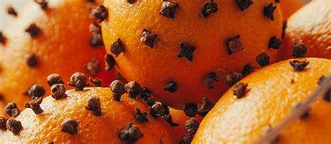 orange clove pomanders mrs meyer s