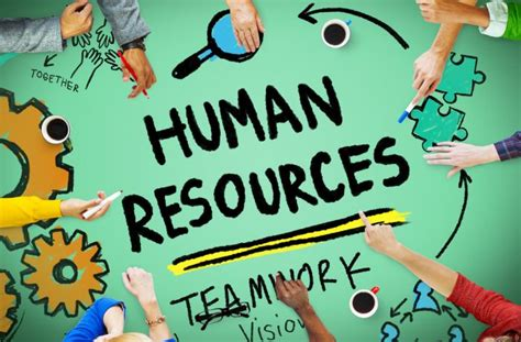 human resources skills to develop for managing specialized