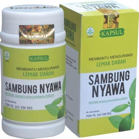 obat herbal alami  penyakit kolesterol  lemak darah