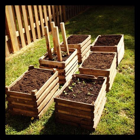 vegetable garden  wooden crates wooden crates garden