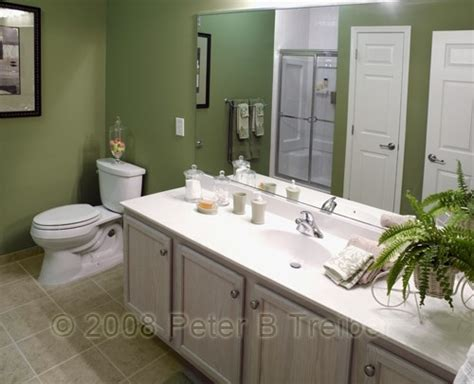 olive green bathroom walls home interiors bathrooms
