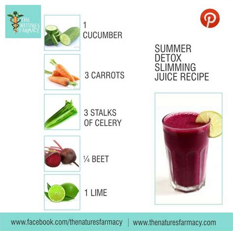 Low Sugar Detox Juice Recipes by 67 Best Juice Recipes Images On Juice Recipes