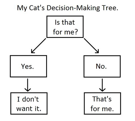decision tree flowchart the cat s meow a cat s decision tree kitties