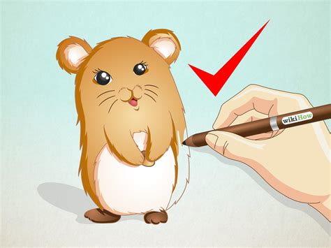 doodle wiki how how to draw a hamster 15 steps with pictures wikihow