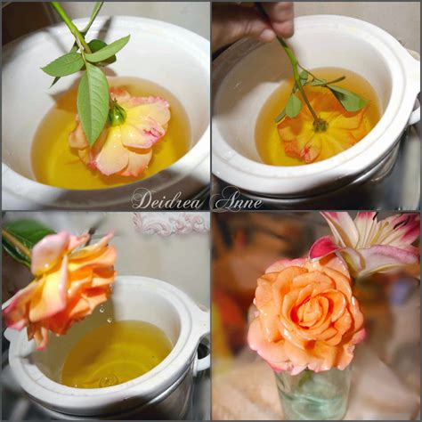 How Do You Keep Roses Fresh In A Vase by Preserve Flowers Fresh In Wax Tutorial Beesdiy