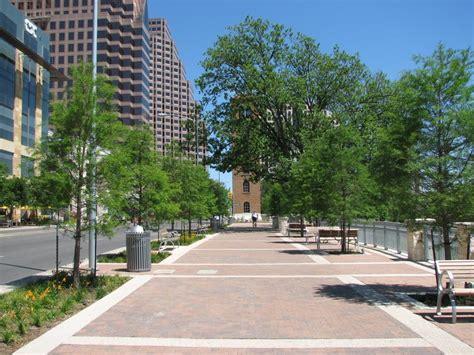 city tree vibrant forest austintexas gov the