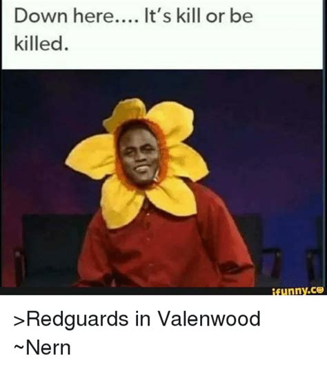 Or Meme Here It S Kill Or Be Killed Ifunnyco Gt Redguards In Valenwood Nern Meme On Me Me