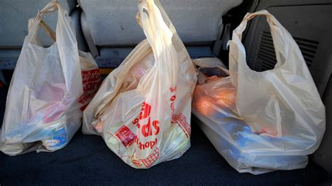 Rupert Goes Back To Plastic Bags by Nyc Council Passes Approves 5 Cent Charge For Plastic Bags