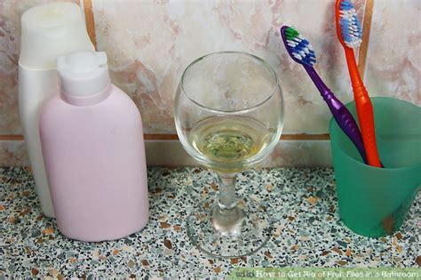 fruit flies in the bathroom fruit flies in bathroom 28 images how to get rid of fruit flies in the house or