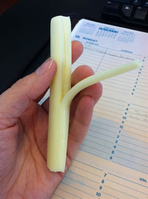 String Cheese - runs for food and exercising my way through