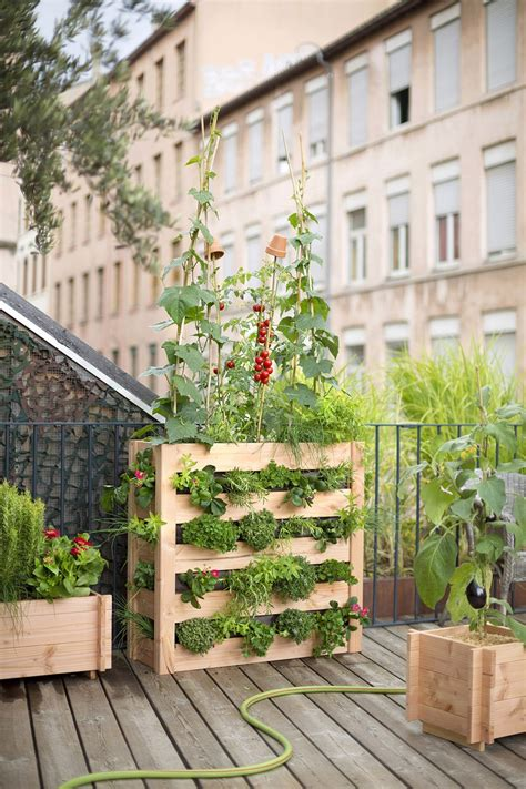 Jardin Vertical Balcon by Cr 233 Er Un Potager Sur Mon Balcon Maison