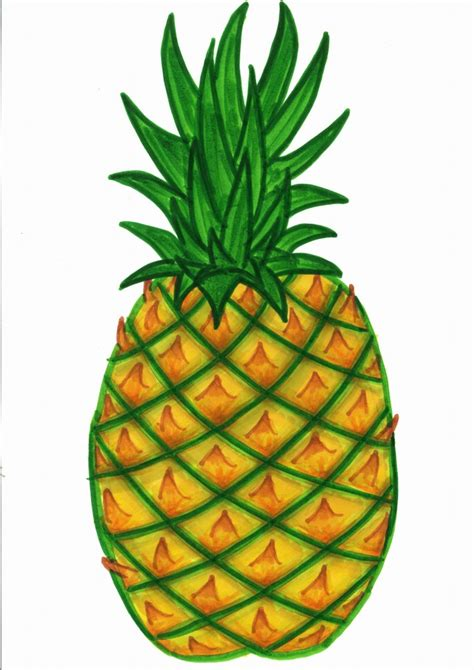 Clipart Pineapple pineapple clip clipart best