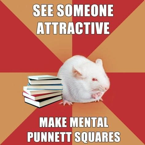 Memes And Genes - genetics biology and jokes on pinterest