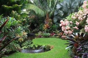 Home Designs Cairns Qld Dennis Hundscheidt S Garden Never Enough Palms