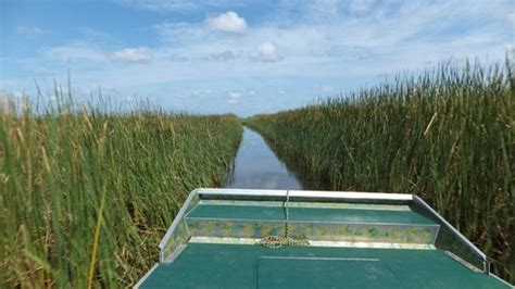 fan boat tours mobile al airboat express tours spanish fort all you need to