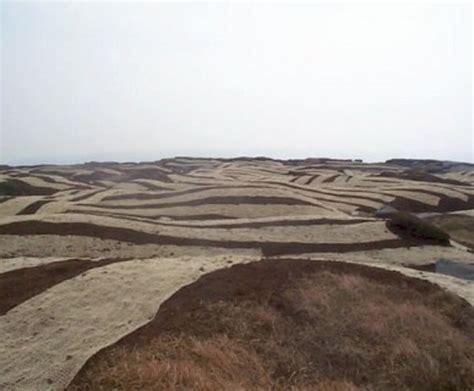 soil saver biodegradable jute erosion mesh hy