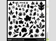 Leaves Silhouettes Vector Stock Vector - Image: 39247004 Oak Leaf Pictures Clip Art