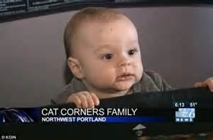 attacks baby calls 911 after cat attacks baby then bails whole family in bedroom daily