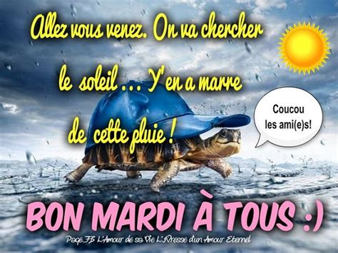 Bouquet by Images Et Photos Avec Tag Bon Mardi Humour Bonnesimages