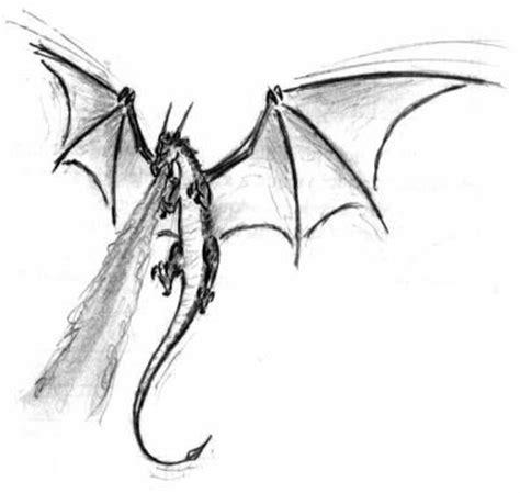 drago volante de canrong les dragons volants skyrock
