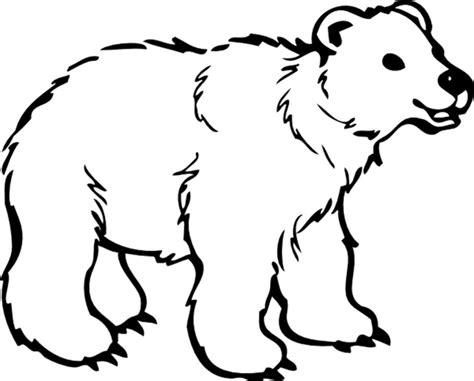 belajar mewarnai gambar binatang untuk anak beruang yang lucu